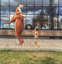 La famille Kangouroux animation déambulatoire -075-