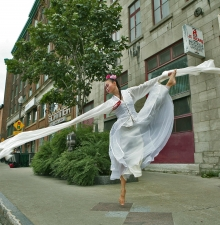 Prestation de Danse chinoise moderne et traditionnelle (103)