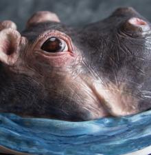 Gâteaux Artistiques 3D et plus… (200)